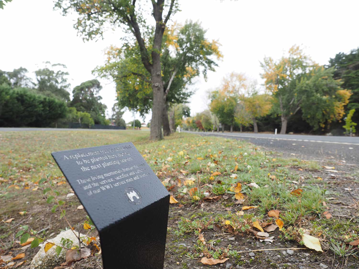 Dearly - Customised Memorial - Avenue of Honour