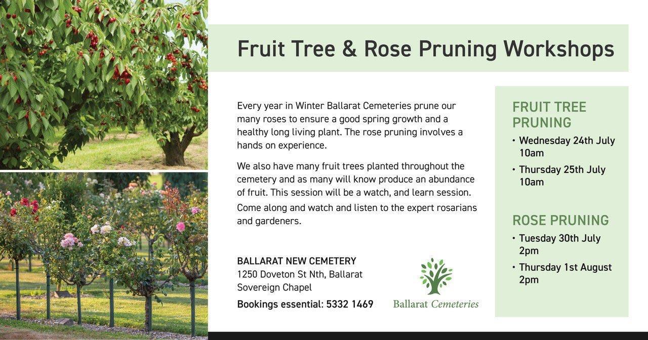 Fruit Tree & Rose Pruning Flyer